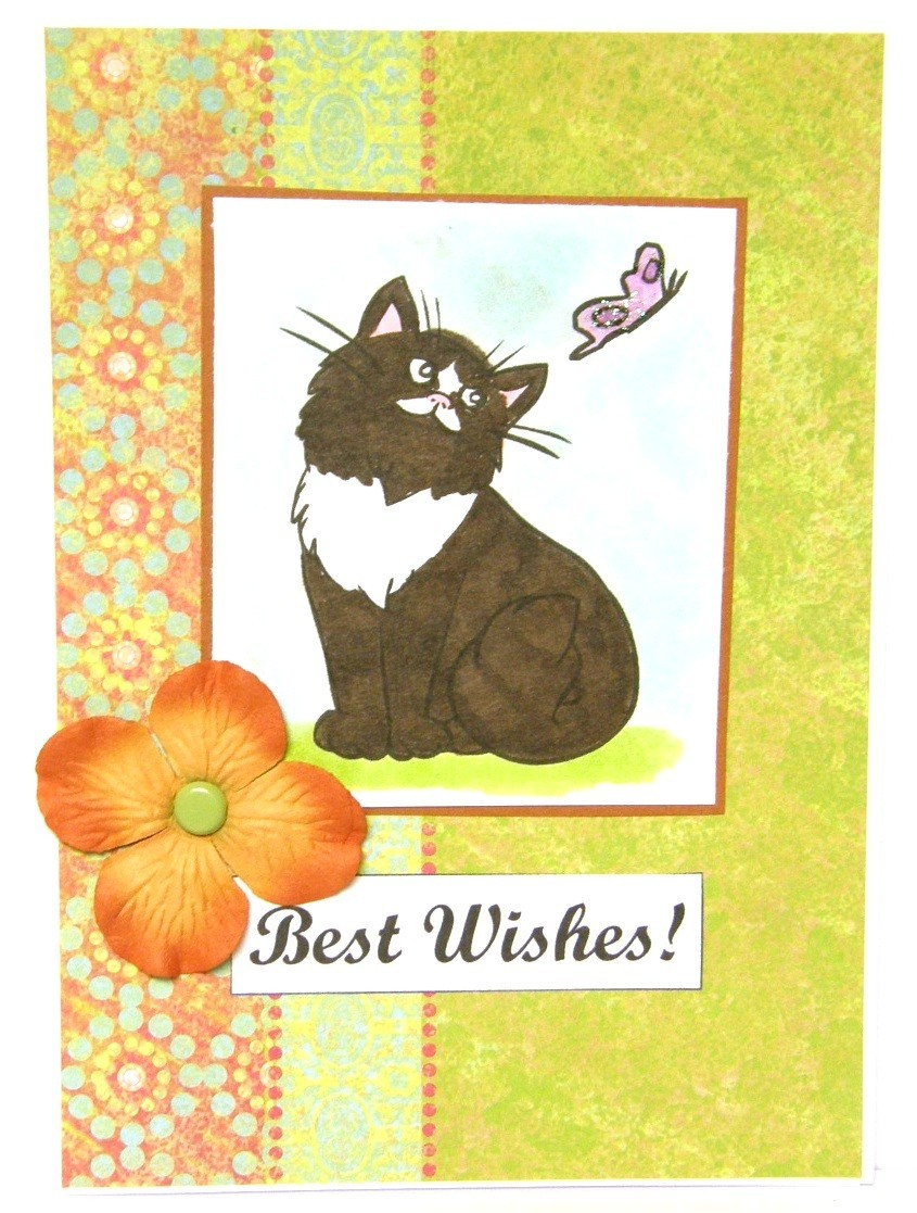 Birthday Card Cat And Butterfly