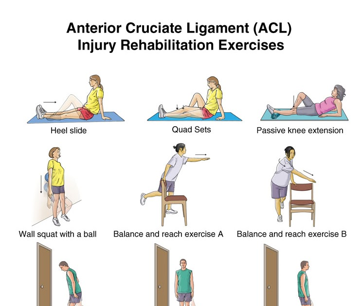 Knee Surgery Information Physiotherapy Knee Exercise