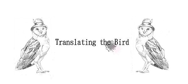 Translating the Bird