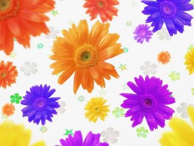Raznobojno cvijeće - besplatna e-card čestitka za Valentinovo