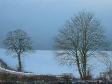Vue de l'atelier l'hiver...