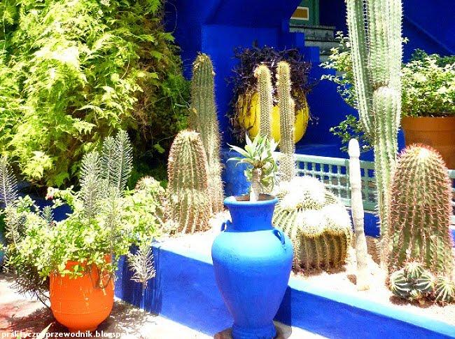 Ogród Majorelle Maroko