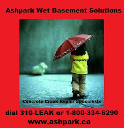 Ashpark Wet Basement Specialist