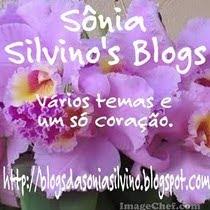 Recebi da SoniaSilvino