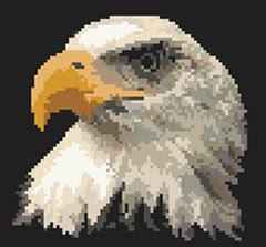 схема вышивки крестом гордый орел