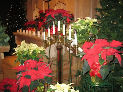 Beautiful decoration of Christmas candles between the flowers Christian Christmas picture free download