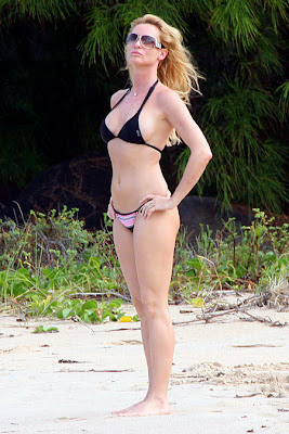 nicollette sheridan bikini2 00 Liberal candidate's gay marriage vow welcomed
