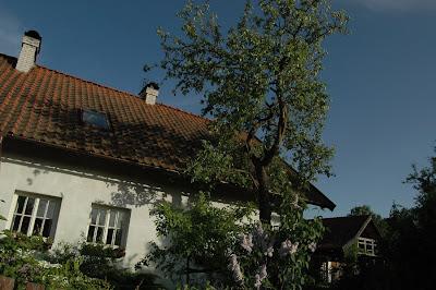 Pluski domek zdjęcie