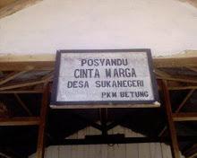 Posyandu Cinta Warga Sukanegeri