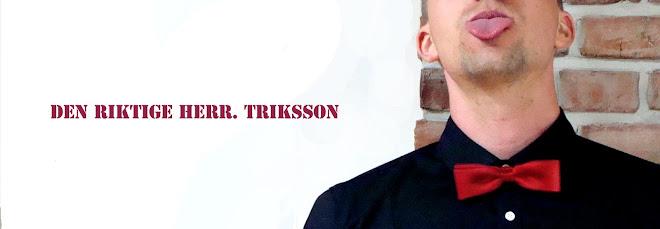 Den Riktige Herr Triksson