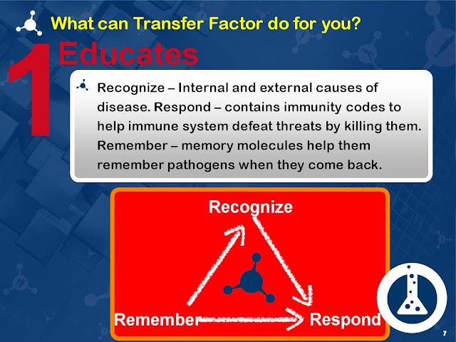 What is transfer factor