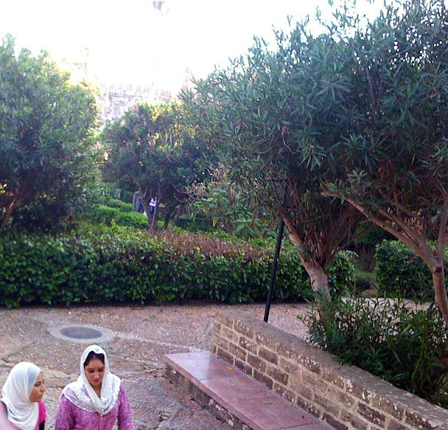 5895 petit tour au jardin de la casbah des oudayas a rabat for Au jardin de la tour