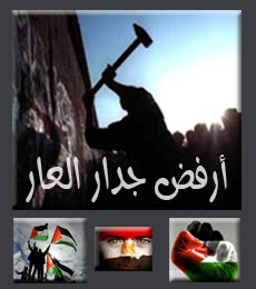 النصر لغزه