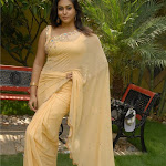 Namitha In Saree, Namitha Sexy Gallery