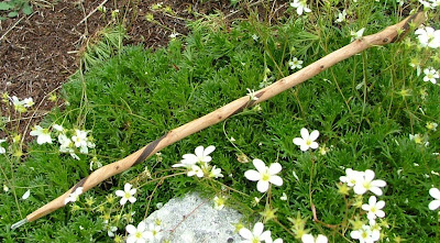Spirit of old special offers for summer for Wooden elder wand for sale