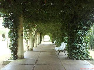 porche parque Miguel Servet Huesca