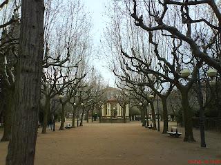 árboles parque Miguel Servet Huesca