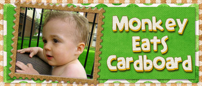 Monkey Eats Cardboard