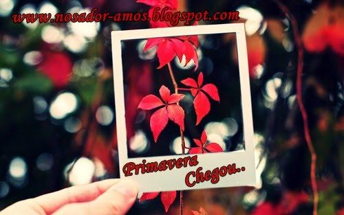 http://4.bp.blogspot.com/_pZTopMItfGU/TLCWM80adlI/AAAAAAAAAx0/BOBESXuA6N0/s1600/tumblr_l9snafdQeI1qa9jx4o1_500_large.jpg