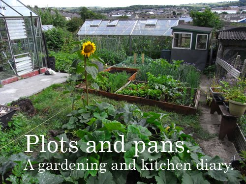 Plots and Pans. A gardening and kitchen diary.