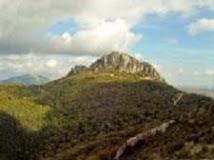 Contra la línea de alta tensión de Treviño y Montaña Alavesa