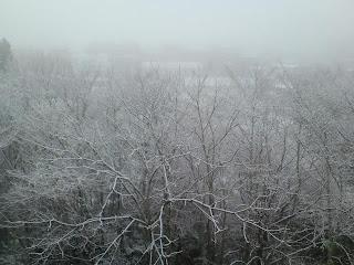 写真: 9日目の朝に撮影した窓の外の景色
