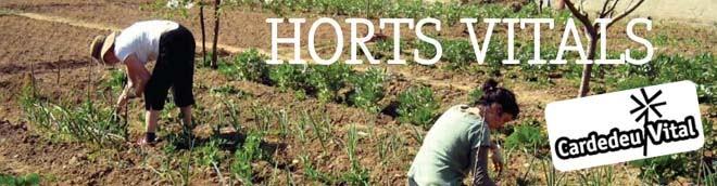 Horts Vitals