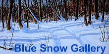 Blue Snow Gallery