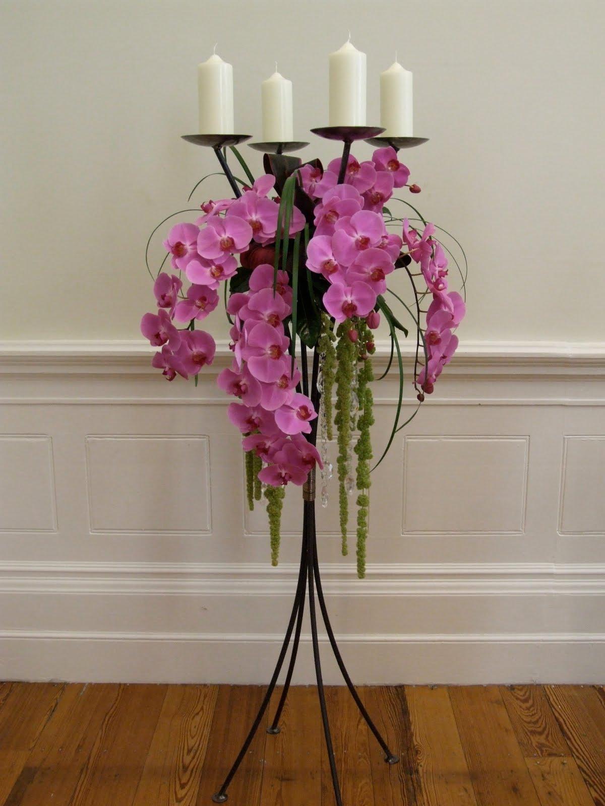 http://4.bp.blogspot.com/_pbR4rzHlM5k/TBpxpVbC-KI/AAAAAAAAAgk/0wm4WRCcjMw/s1600/pink+phalaenopsis+candlabra%5B1%5D+(2).jpg