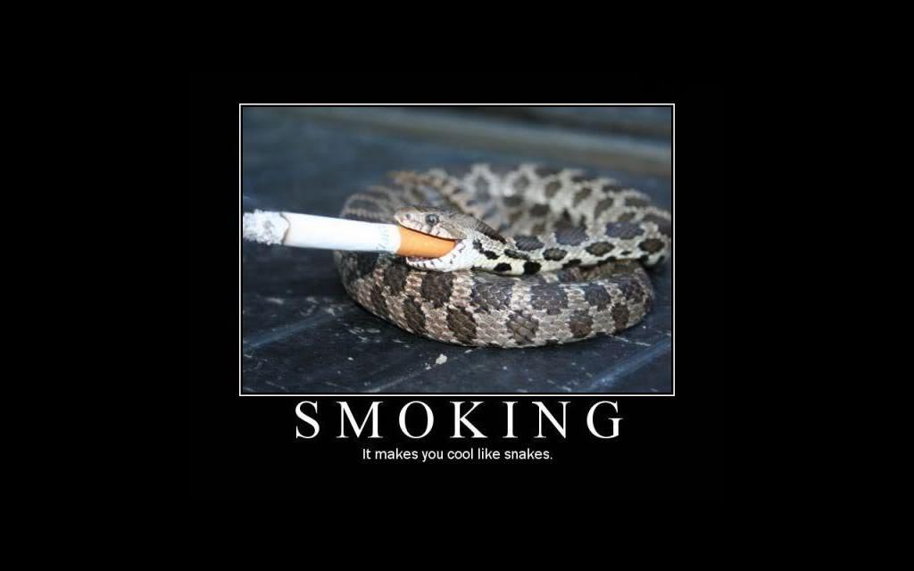 [Smoking.jpg]