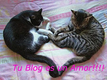 "PREMIO ""Tu blog es un amor"""