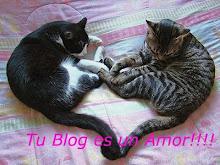 """PREMIO """"Tu blog es un amor"""""""