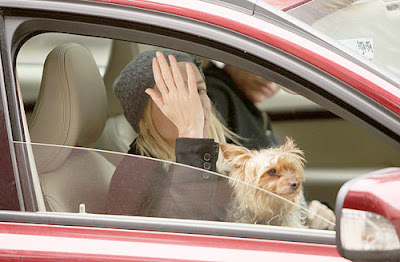 Naomi Watts Laura Harring