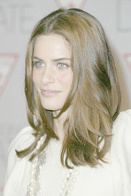 Amanda Peet The Wedding Date