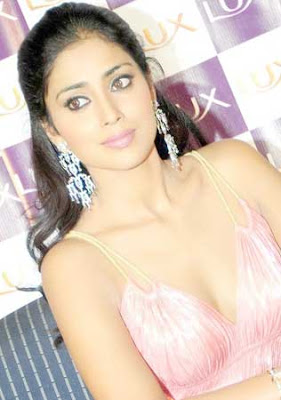 Shriya Saran Lux Promotional Event Photos