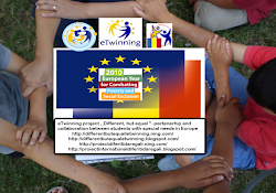Website for eTwinning project ,,Different , but equal ""