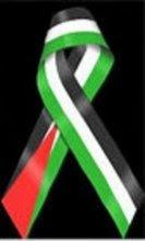 Solidariedade à Palestina