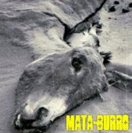 Download- Mata Burro