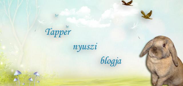 Tapper blogja