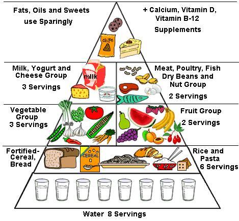 makanan sehat presentment