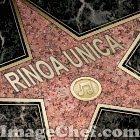 VISITA EL FORO DE RINOAUNICA: www.rinoaunica.mforos.com