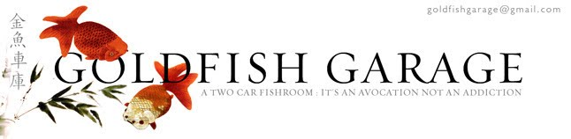 Goldfish Garage: A Two Car Fishroom