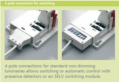 The Vitesse Modular 4 - Four Pole Connection for switching luminaires