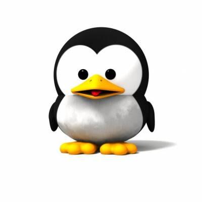 Pur d lire les pingouins - Pingouin rigolo ...