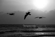 Triada en la playa de Punta Umbría