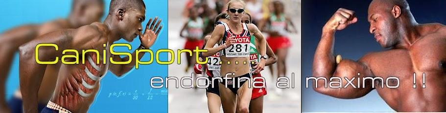 CaniSport:,noticias mundo deportivo,nutricion,proteinas,ejercicios dietas