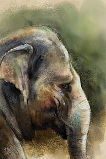 indian elephant painting