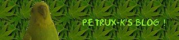 petrux-k
