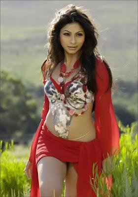 Tanisha Mukherjee hot legs