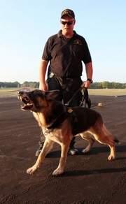 [rover+police+dog]